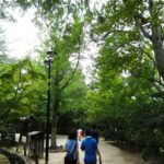 宮島観光(紅葉谷公園)