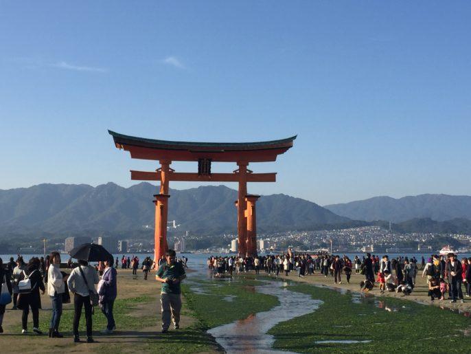 厳島神社の大鳥居へ向かう